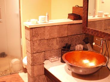 シャワー&トイレ完備のパウダールームもお部屋に