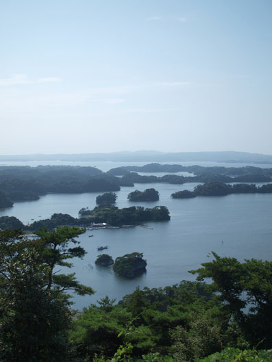 松島にも被害があったようです
