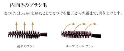 内向きのブラシ毛
