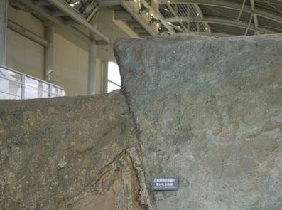 右側が兵庫県南部地震で動いた主断層