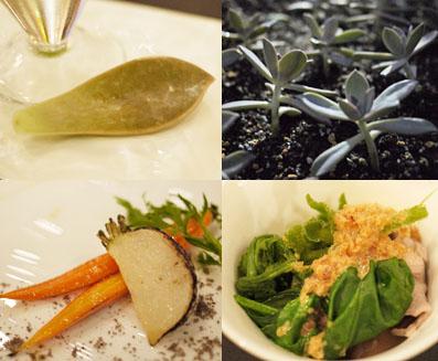 菜園で穫れた野菜たち