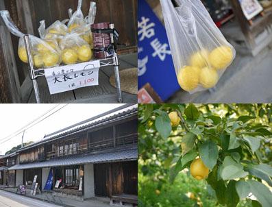 大町レモンと船宿カフェ若長