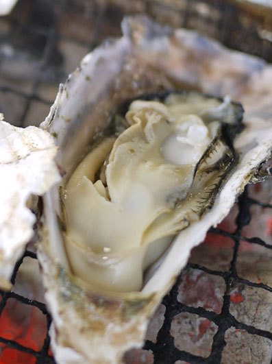 ひろしま牡蠣