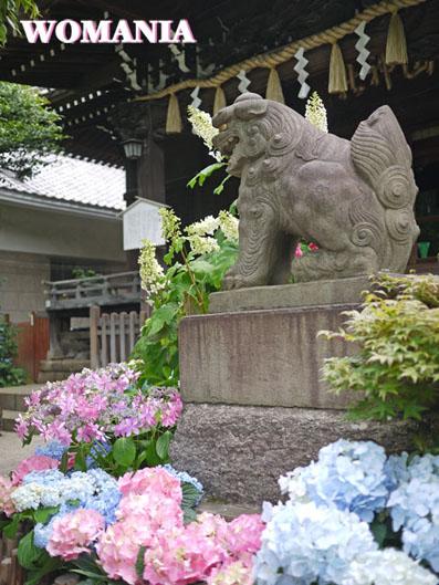 神社ならではの風景