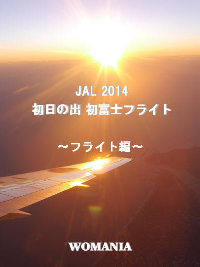 JAL 2014 初日の出 初富士フライト 〜乗るまで編〜
