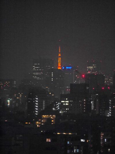 東京タワーも見えるよ