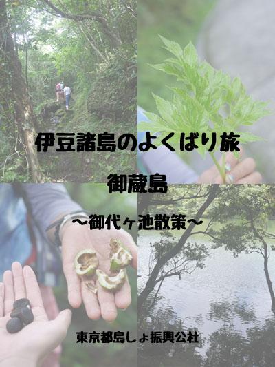 伊豆諸島の欲ばり旅 〜海だけじゃない!御蔵島でトレッキング〜