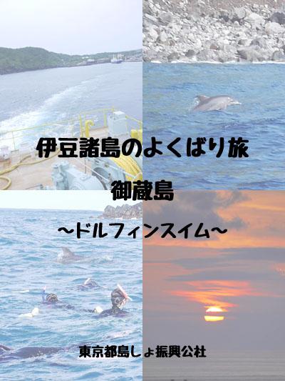 伊豆諸島の欲ばり旅 〜御蔵島で野生のイルカと泳ぐ〜