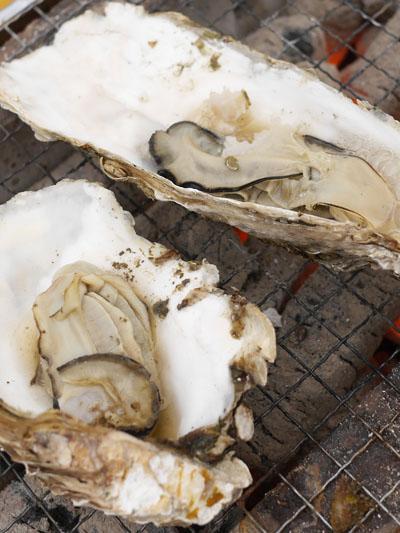 牡蠣、焼きまくりました!
