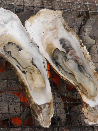宮城県産の牡蠣