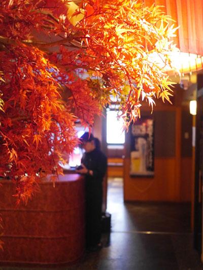 紅葉の響 赤坂店