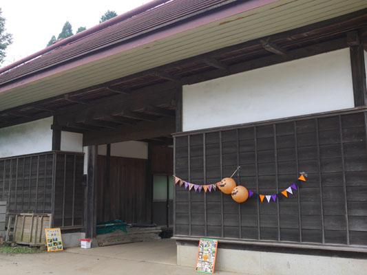 千葉県・山武市かつのりな農園