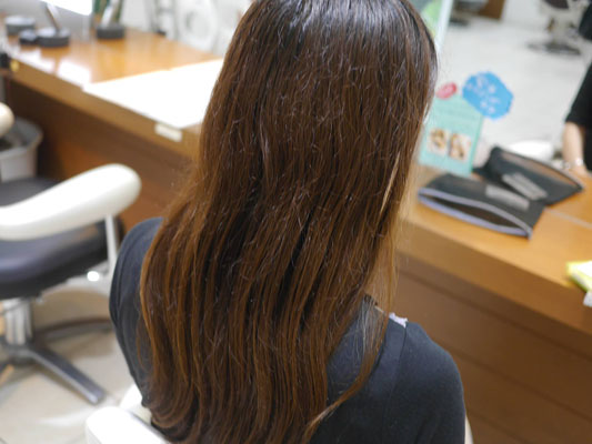 RESALONの効果 髪質が改善される前の髪の状態