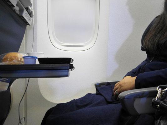 ユナイテッド航空 エコノミープラス シート間隔 どれくらい広いか