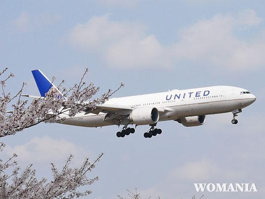 飛行機と桜 成田さくらの山公園 口コミ
