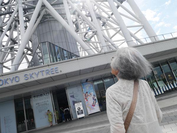 高齢者にオススメ 観光スポット 東京観光